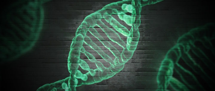ワキガは遺伝する確率