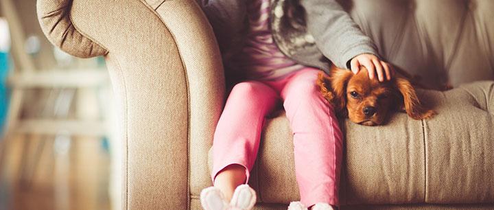 子犬と過ごす